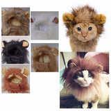 Lion Mane Costume for Cats - Your Star Pet