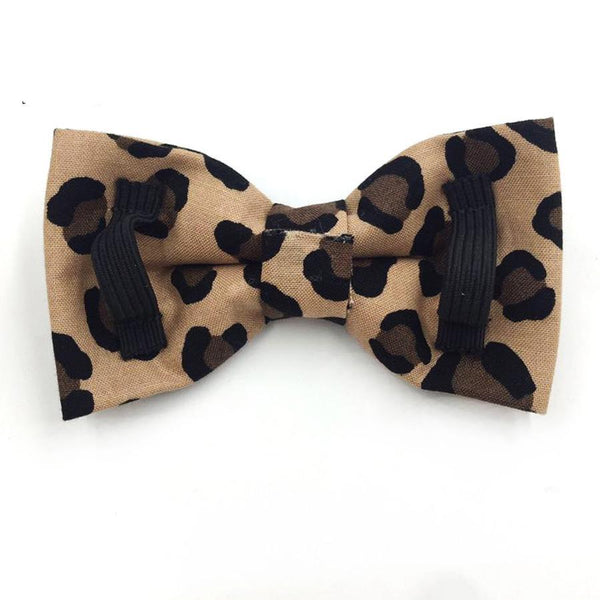 Leopard Print Collar or Collar/Leash Set