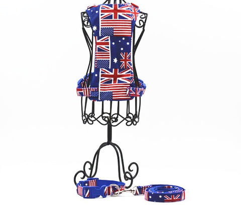 UK Small Dog Harness, Collar, and Leash - Your Star Pet
