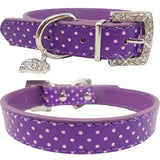 Luxury Leather Pet Collars - Your Star Pet