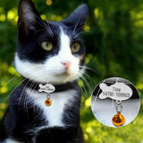 Personalized Dog/Cat Collar w/Bell Charm - Your Star Pet