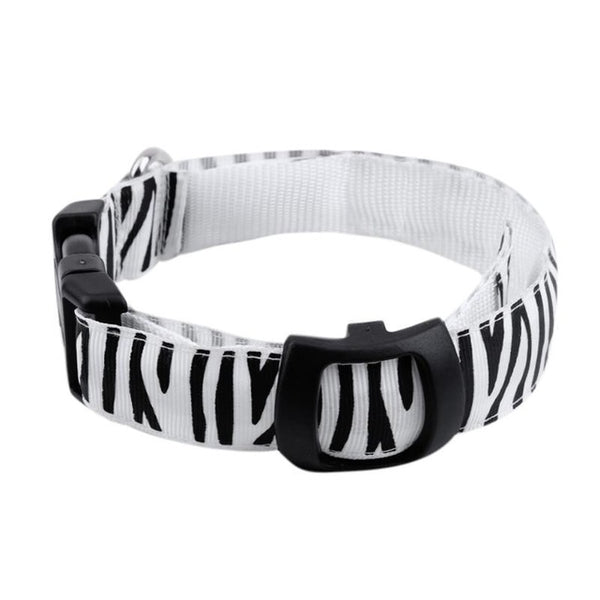 USB Rechargeable LED Pet Collar Animal Print - Your Star Pet