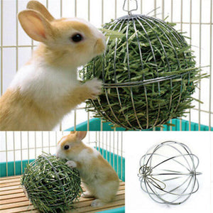 Hanging Ball for Small Animals
