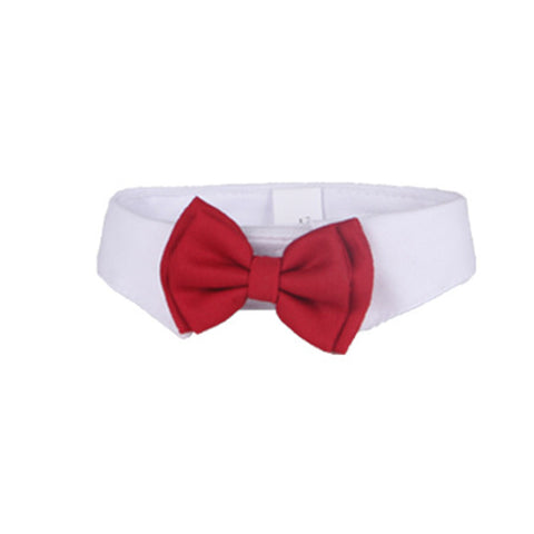 Red BowTie Collar - YourStarPet