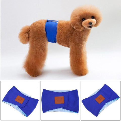 Super Absorbent Washable Briefs for Male Dogs