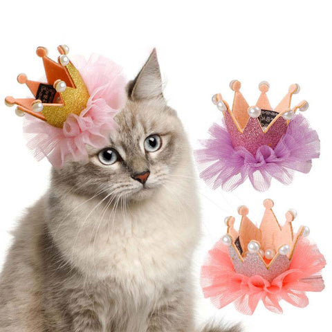 Beautiful Crown Pet Hair Clip