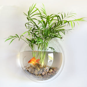 Wall Mounted Bubble Aquarium - YourStarPet