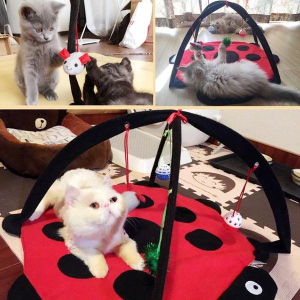 Foldable Cat Activity Tent With Blanket and Toys