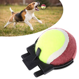 Perfect Pet Picture Phone Accessory