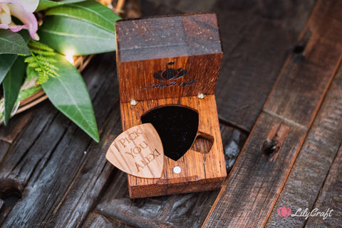 guitar pick holder box