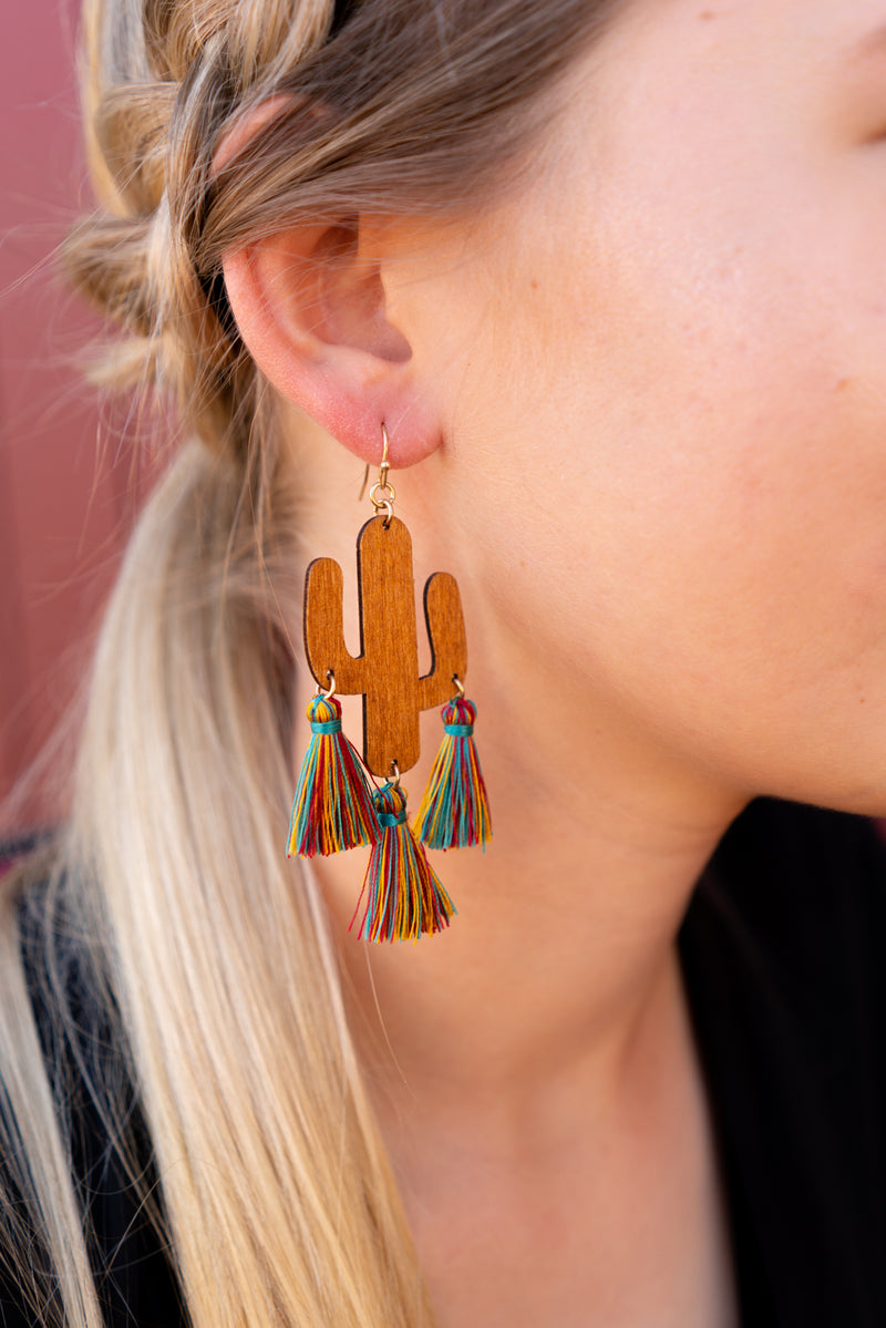 Saguaro and Rainbow Tassel Earrings