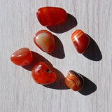 Red Banded Agate Tumbled Stones - Little Gems Metaphysical Store