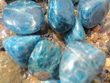 Load image into Gallery viewer, Blue Apatite Tumbled - Little Gems Metaphysical Store