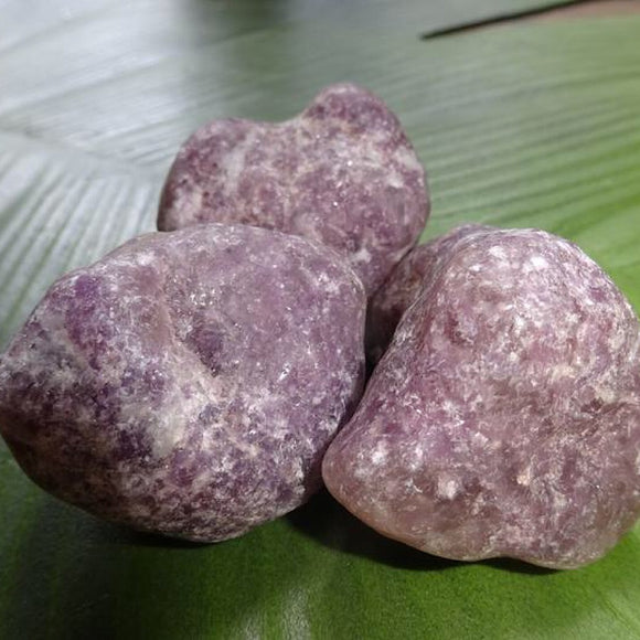 Lepidolite Tumbled - Large - Little Gems Metaphysical Store