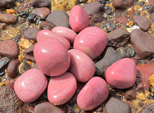Load image into Gallery viewer, Pink Petrified Wood Tumbled - Little Gems Metaphysical Store
