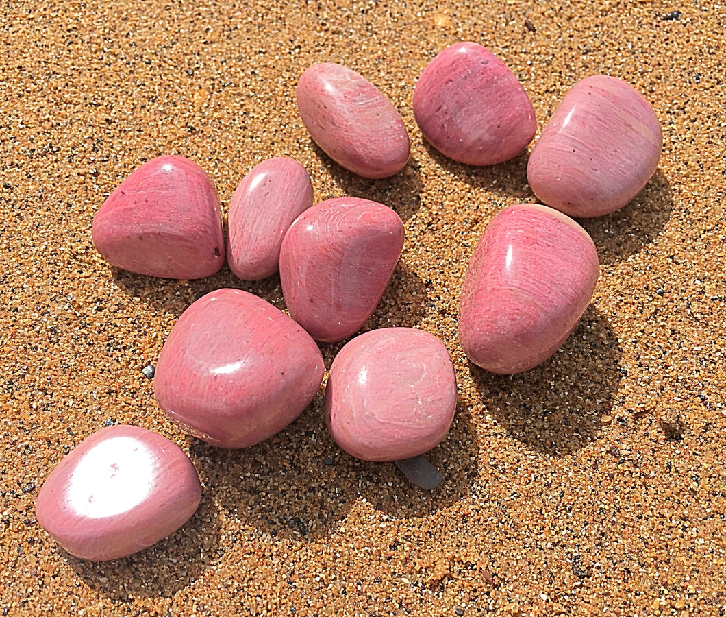 Pink Petrified Wood Tumbled - Little Gems Metaphysical Store