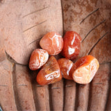 Carnelian Tumbled Stones - Little Gems Metaphysical Store