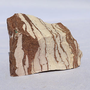 Zebra Jasper Rough - Little Gems Metaphysical Store