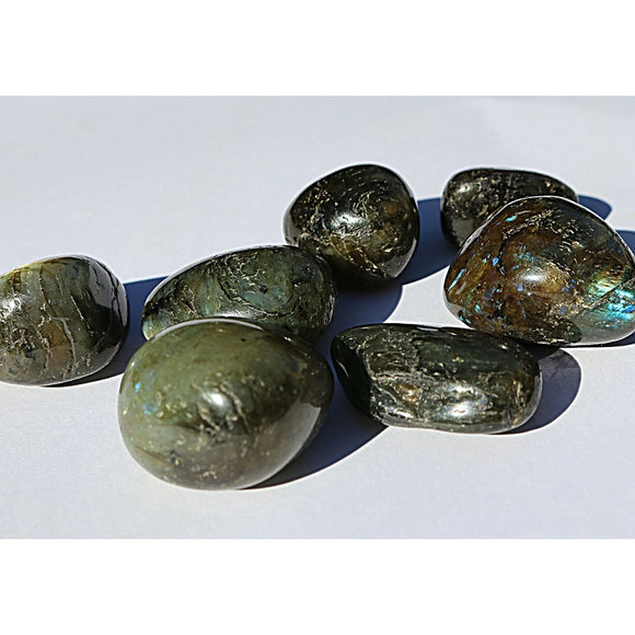 Labradorite Crystal Tumbled Stones - Little Gems Metaphysical Store