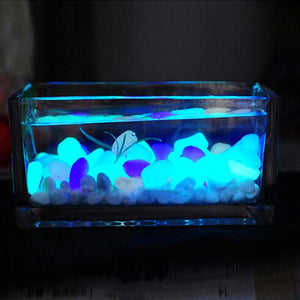 Nice Aquarium and Pathway Decorative Glow Stone - Cyber Zone Online