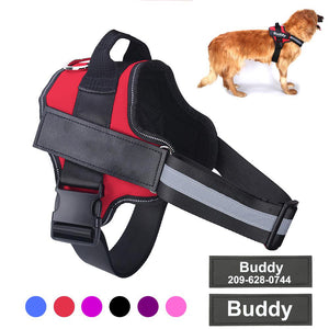 Personalized Reflective Pet Harness