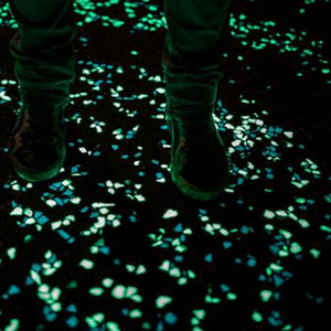 Glow-In-The-Dark Garden Stones - Cyber Zone Online