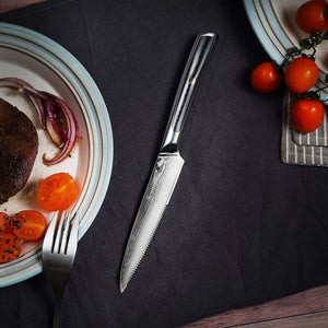 Sunnecko 4pcs Steak Knife Set