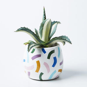 TICKATAPE POT | JONES & CO
