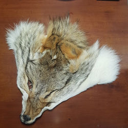 Coyote Mask