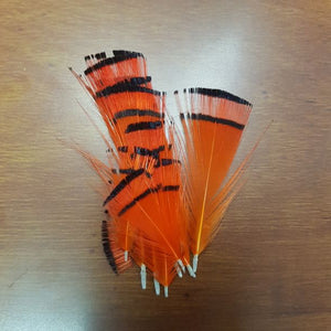Golden Pheasant Tippets