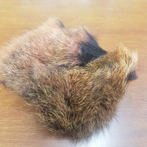 Possum Fur Patch
