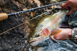 Primal Fly Rods - Mega Saltwater Rods