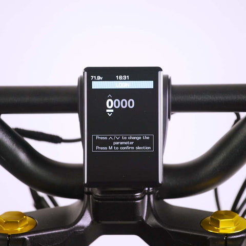 Wolf King GT electric scooter display, screen on, password interface