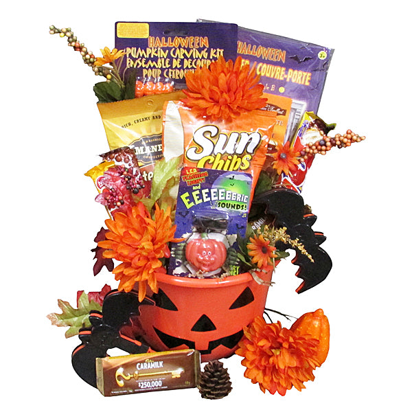 Pumpkin Patch - Spooky Halloween gifts for children