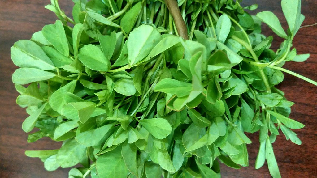 fenugreek-plant-period-pain-Dysmenorrhea