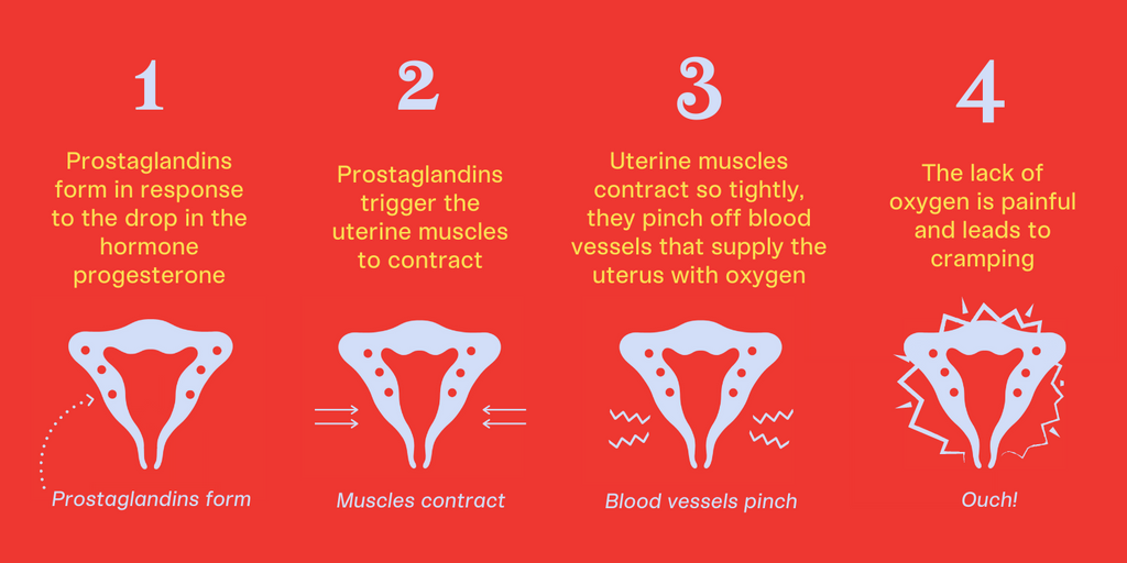 what-causes-period-cramps