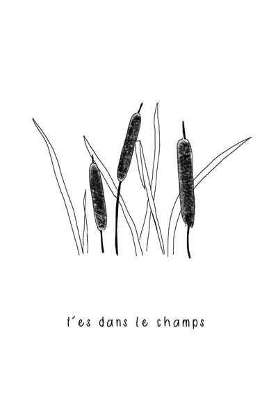 t'es dans le champ - illustration