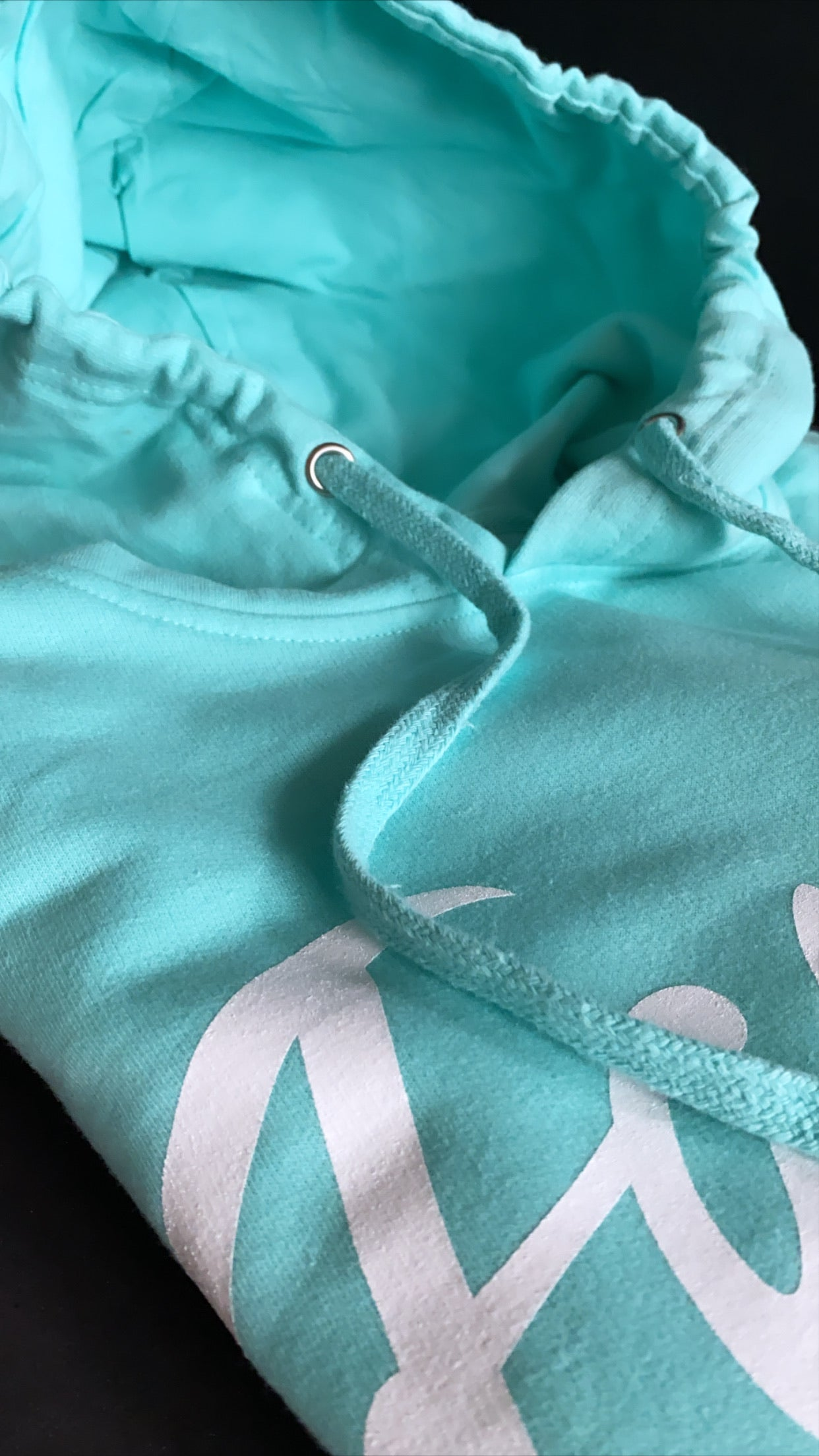 FAMOUS Script Mint Hoodie - Famous Club Clothing