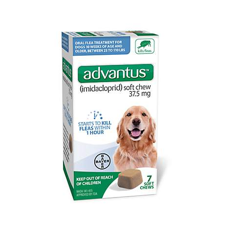 Bayer Advantus Oral Flea Treatment Soft Chews for Dogs