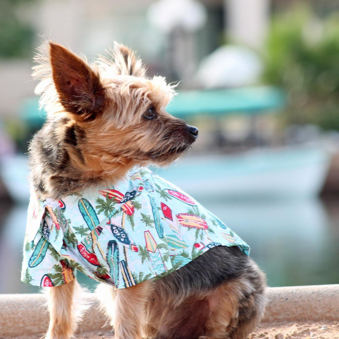 Doggie Design Hawaiian Camp Shirt - Surfboards and Palms Dog Shirt-Le Pup Pet Supplies and Grooming