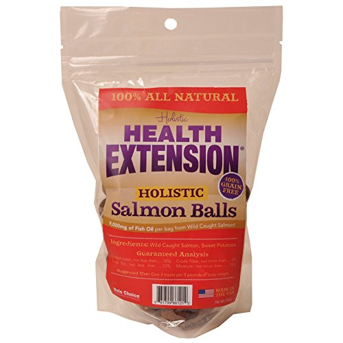 Health Extension Holistic Salmon Balls Grain-Free Dog Treats-Le Pup Pet Supplies and Grooming