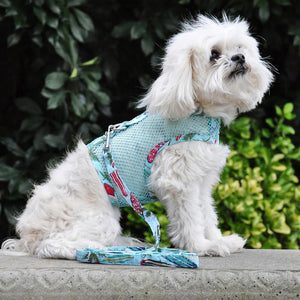 Doggie Design Cool Mesh with Leash Surfboard and Palm Dog Harness-Le Pup Pet Supplies and Grooming