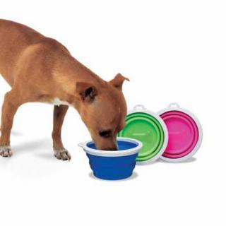 Bamboo Home Collapsible Travel Bowl for Dogs and Cats Supply, random color-Le Pup Pet Supplies and Grooming