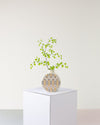 Wildflowers Bud Vase