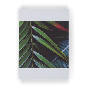 Plantas III by Theresia Koch: 3 Notecards