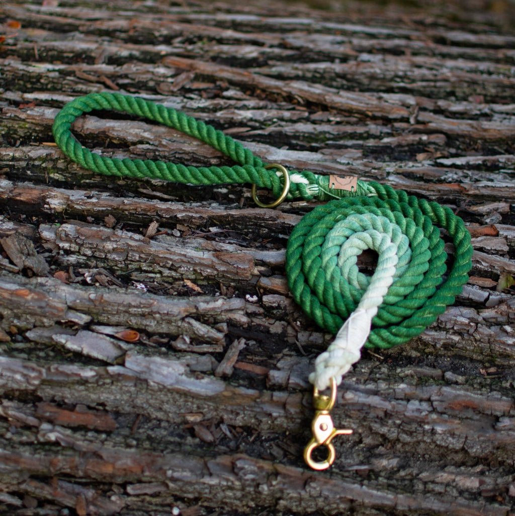 Forest green - Leash