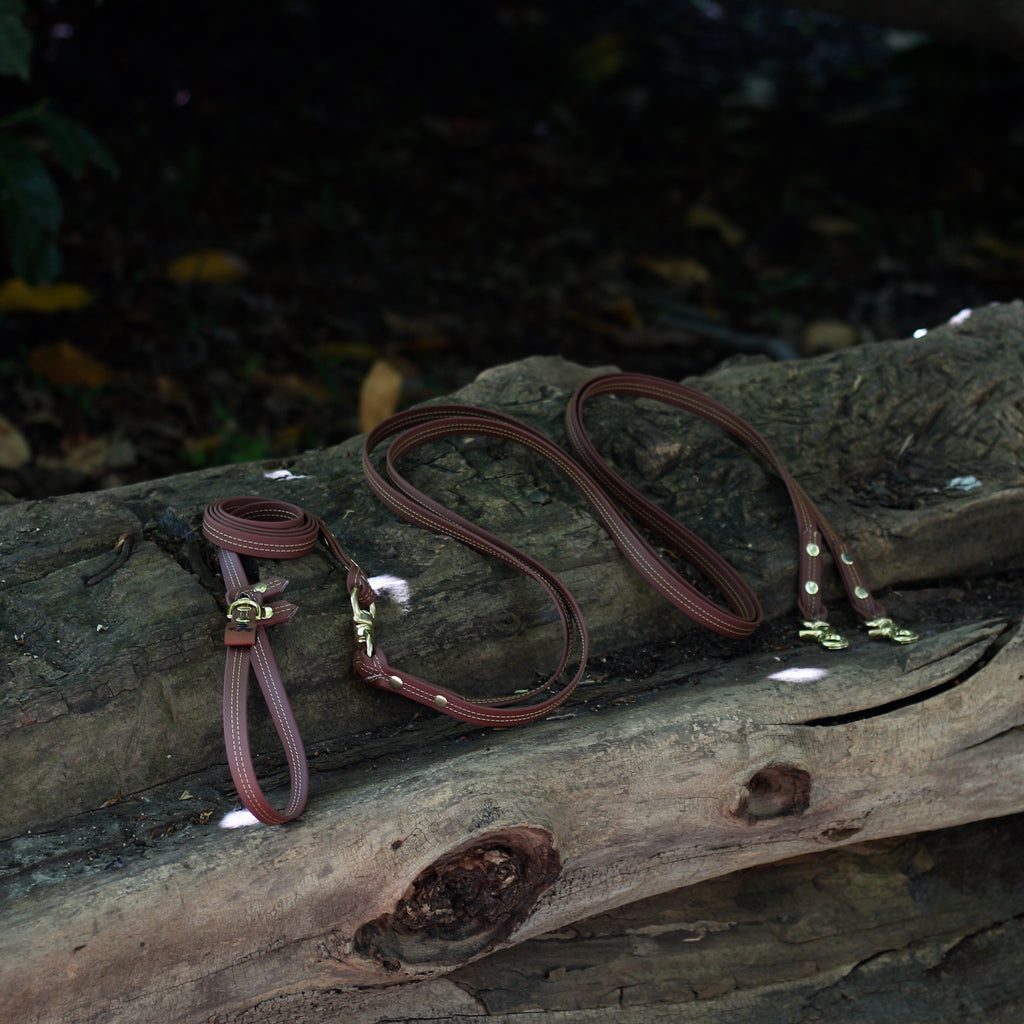 DUO Adjustable leash - Naturel stitches