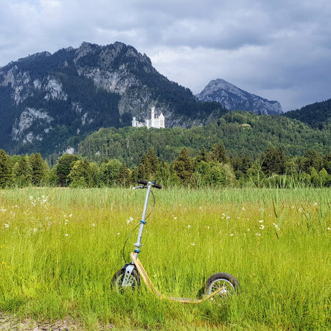 neuschwanstein castle boardy