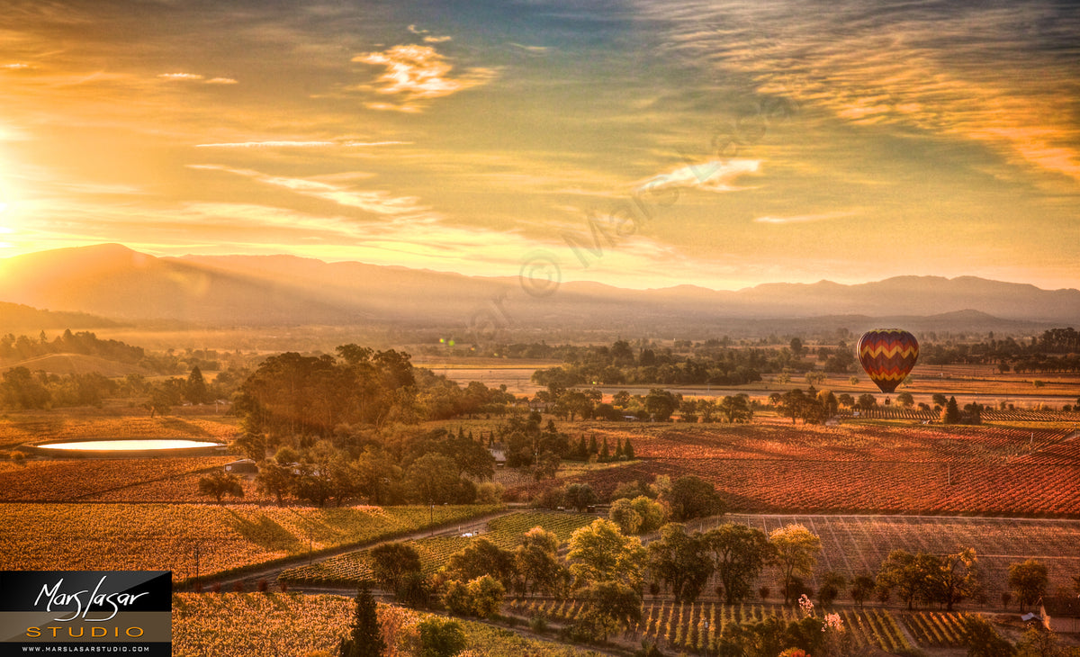 Napa Valley Fall Sunrise
