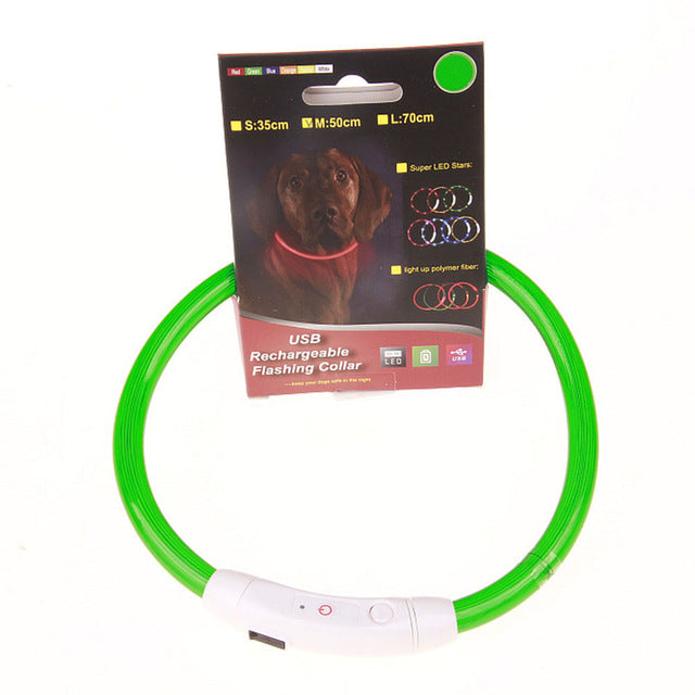Simple USB LED Flashing Light Band Belt Safety Pet Dog Collar Rechargeable Multicolor - LightBalance.co